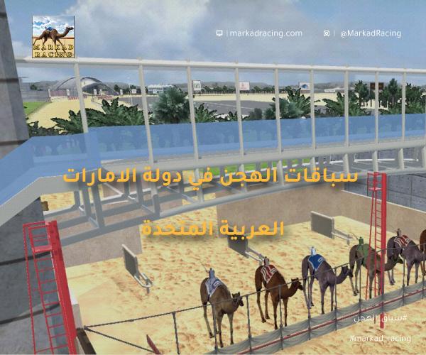 سباقات الهجن في دولة الامارات العربية المتحدة