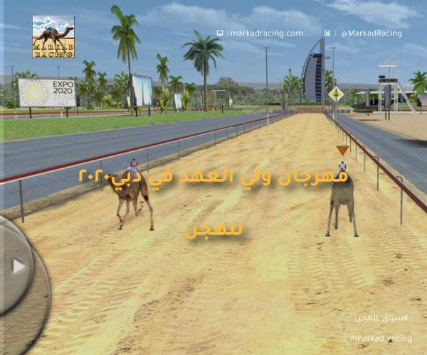 مهرجان ولي العهد للهجن 2020 في دبي